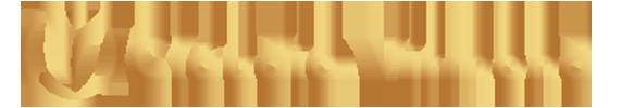 Clínica Dra. Cláudia Virmond Logotipo